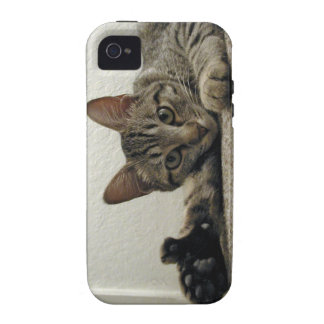 Polydactyl Kitty Cat MIRA gives THUMBS UP!  =^..^= Vibe iPhone 4 Covers