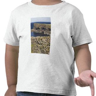 Polygonal basalt, Staffa, off Isle of Mull, T Shirt