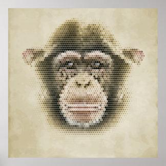 Polygonal monkey portrait illustration poster