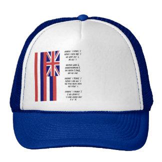 Polynsesian Pride: Flag of HAWAII  & ANTHEM Trucker Hat
