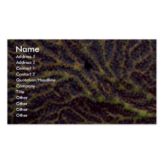 Polyp-laden sea fan Double-Sided standard business cards (Pack of 100)