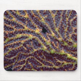 Polyp-laden sea fan mousepad