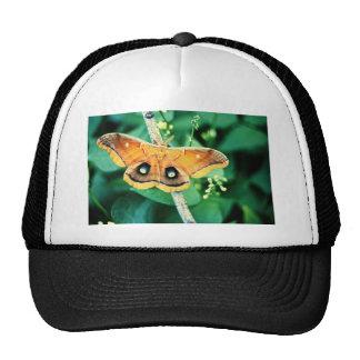 Polyphemus Moth Mesh Hat