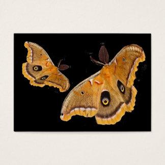 Polyphemus Moths ATC Business Card