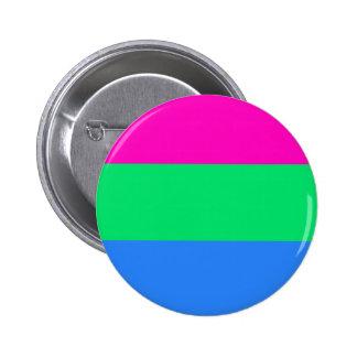 Polysexual pride flag pinback button