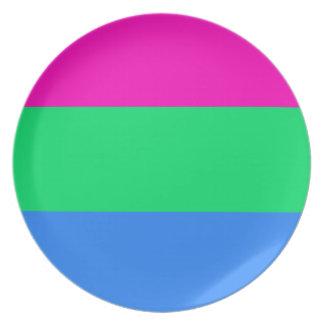 Polysexual pride flag melamine plate