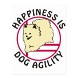 Pom Agility Happiness Postcard