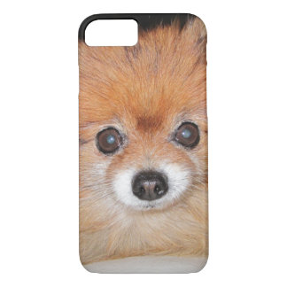 pom.png iPhone 8/7 case