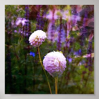 Pom Pom Flowers Purple Poster