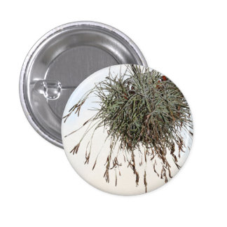 Pom-pom Nest Pinback Button