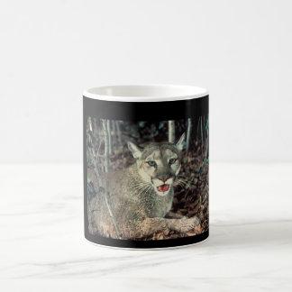 poma cat coffee mug