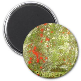 Pomegranate 2 Inch Round Magnet