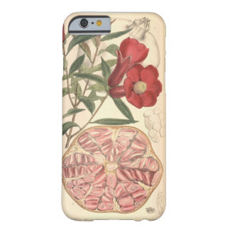 Pomegranate Barely There iPhone 6 Case
