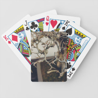 Pomegranate bonsai branches bicycle playing cards
