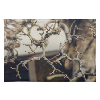 Pomegranate bonsai branches cloth placemat