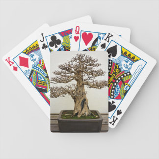 Pomegranate Bonsai Tree Bicycle Playing Cards