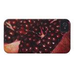 Pomegranate Case-Mate iPhone 4 Cases