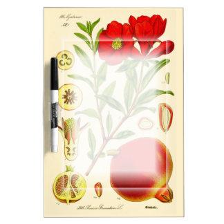 Pomegranate Dry-Erase Board