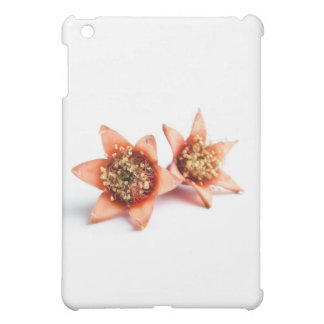 Pomegranate flowers iPad mini case