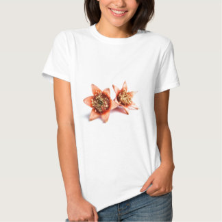 Pomegranate flowers T-Shirt
