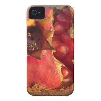 Pomegranate fruit with visible grains Case-Mate iPhone 4 cases