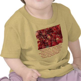 Pomegranate infant shirt