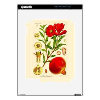 Pomegranate iPad 2 Decals
