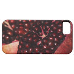 Pomegranate iPhone 5 Cover