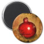Pomegranate Magnets