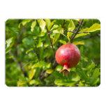 Pomegranate on Branch 5x7 Paper Invitation Card