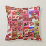 Pomegranate patchwork Cheater quilt pillow