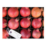 Pomegranate Post Card