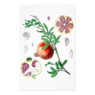 Pomegranate Stationery