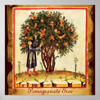 POMEGRANATE TREE ANTIQUE PARCHMENT POSTER