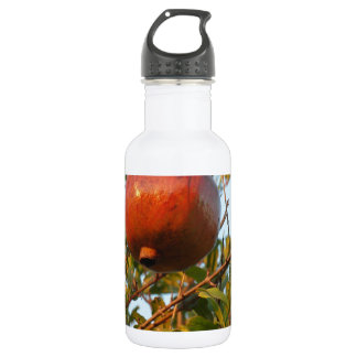 Pomegranate Water Bottle