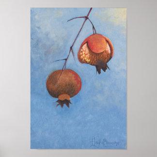 Pomegranates In A Derelict Garden Poster
