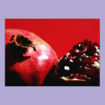 Pomegranates on Red Card