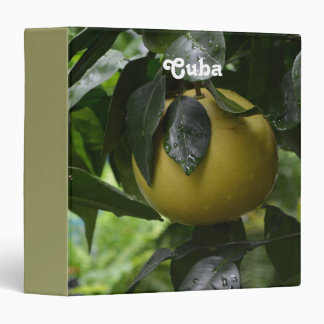 Pomelo de Cuba