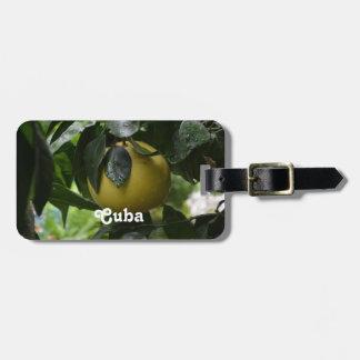 Pomelo de Cuba Etiquetas Para Equipaje