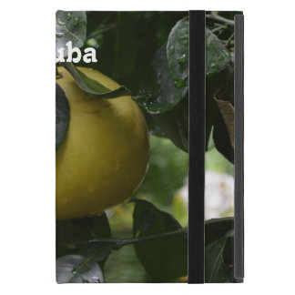 Pomelo de Cuba iPad Mini Cárcasas