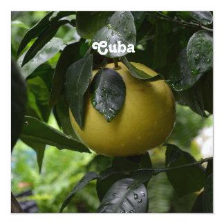 """Pomelo de Cuba Invitación 5.25"""" X 5.25"""""""