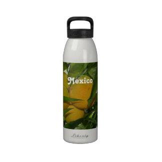 Pomelo de México Botellas De Beber