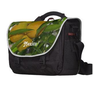 Pomelo de México Bolsas De Portatil