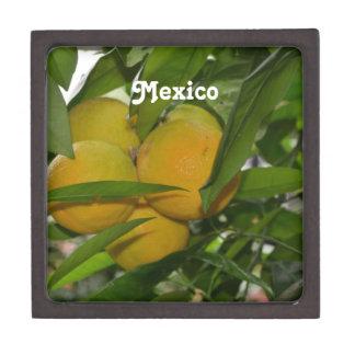 Pomelo de México Cajas De Joyas De Calidad