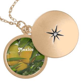 Pomelo de México Medallón