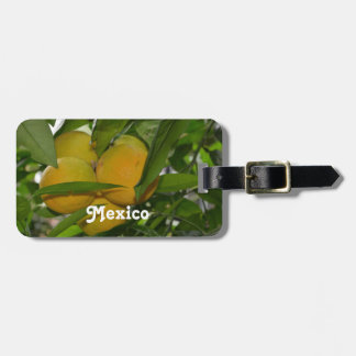Pomelo de México Etiquetas Maletas