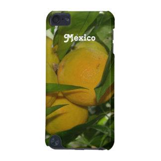 Pomelo de México