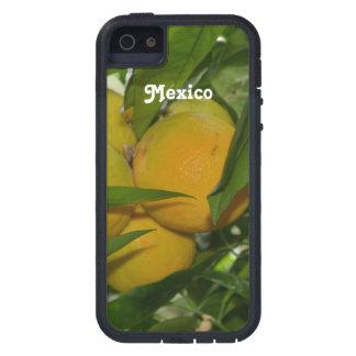 Pomelo de México iPhone 5 Case-Mate Carcasas
