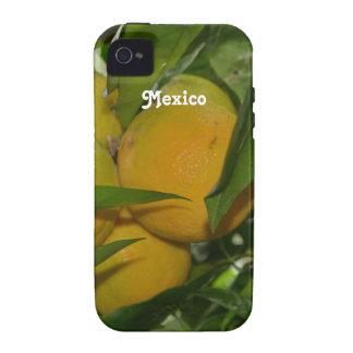 Pomelo de México Vibe iPhone 4 Carcasas