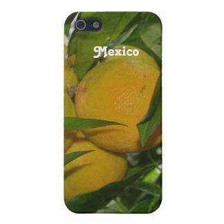 Pomelo de México iPhone 5 Funda